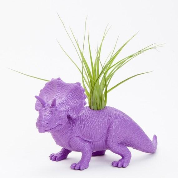Purple Triceratops Dinosaur Planter with Air Plant Room Decor, College Dorm Ornament, Tillandsia Plants and Edibles, Plant Pot