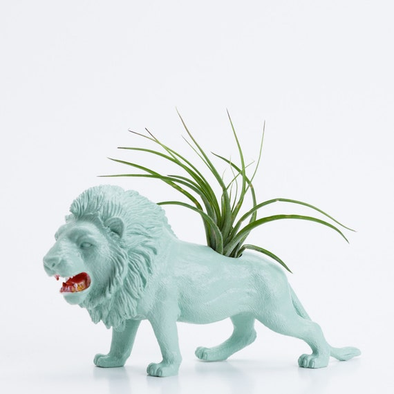 Air Plant Planter with Air Plant Room Decor, College Dorm Animal Ornament, Lion