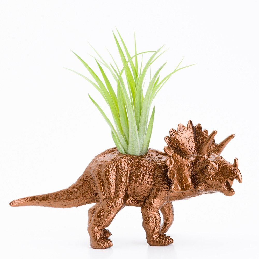 Small Dinosaur Planter With Air Plant Room Decor By Modern333