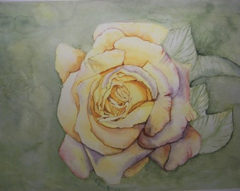 YELLOW ROSE an Original Watercolor Painting