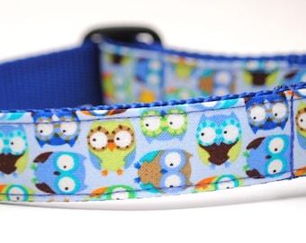 Owl Dog Collar / Party Owl in Blue / Custom Dog Collar