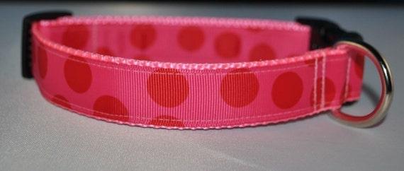 Dog Collar - Sweet Red Dot