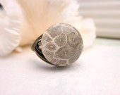 Brown Fossil Coral Ring - To Order - Brown Fossil Ring, Mocha Bronze Almond. Boho Rings. Bohemian Jewelry Rings, Jewelry Stone, Coral Rings
