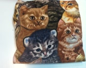 Catnip Blanket