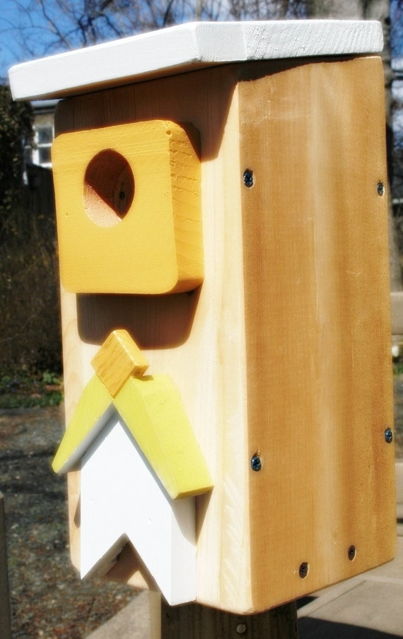 Upcycled Reclaimed Bird House Nest Box for Woodpecker Bluebird Chickadee Nuthatch Titmouse or Carolina Wrens bird wall decor nursery decal