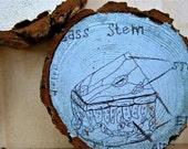 little drawing - science sketch on a log slice (set of 3)