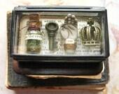 Pocket Museum - Glass Box Curiosity