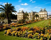 Luxembourg Gardens in Paris, France - 8x10 Fine Art Photograph - affordable home decor