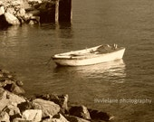 Fine art photography - Yesterday's catch - 5 x 7 - sepia beige tones