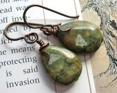 Ancient Forest.  Rainforest Jasper