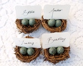 Nest Place Cards, Wedding Spring Favor Robin Egg Blue 10 Easter Woodland Rustic Fairytale Classic Shabby Chic Country Theme Baby Shower
