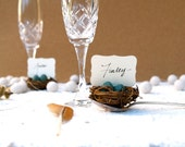 Spring Wedding Place Cards, Nest Woodland Rustic Robin Egg Blue 50 Easter Rustic Fairytale Classic Shabby Chic Country Theme Baby Shower