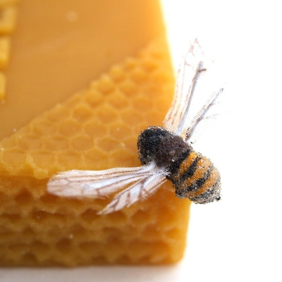 Beeswax, Organic Bees Wax Bee Pure Clean Chemical Free Waldorf crafts all natural soap making candle 2 lb