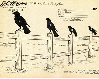 Vintage Shooting Target/Crows on a Fence II