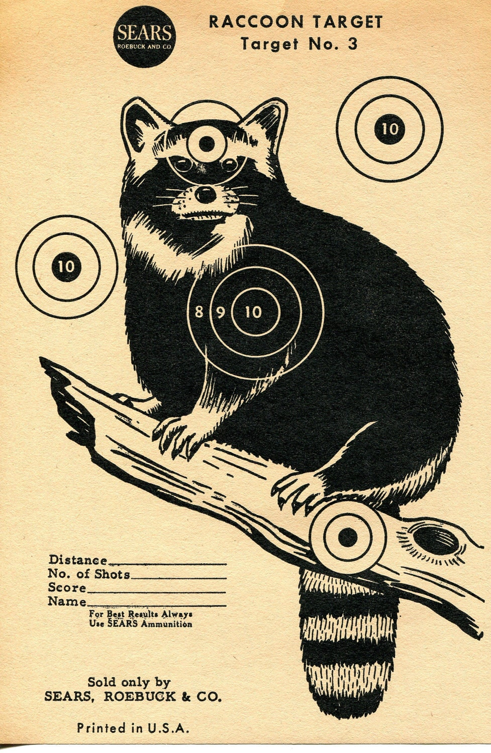 photograph about Squirrel Target Printable identified as Optimum Style and design Guidelines Printable Rat Plans Shots, And