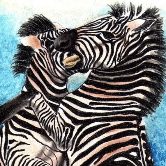 Mixed media drawing of fighting Zebra Stallions