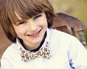 Little Boy Clip On Bow Tie- Feather Like Pattern- Last One
