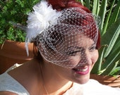 Feather & Flower  Wedge small Birdcage Rhinestone Veil,  Bridal / Prom, Crystal Diamond Russian Netting - Ivory