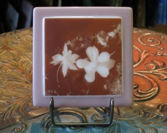 Fused Glass Images, Columbine Flowers, 1397