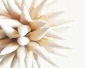 Beach Sand Christmas Ornament Nautical Beach House Bowl Filler Home Decor Paper Polish Star Urchin - White Sandy Beach Sparkler, 4 inch