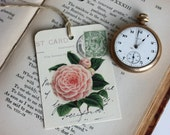 Set of Six Gift Tags - Peonie