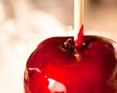 Carnival / fair / circus food photo - Candy Apple Red - 8x8 - teacher gift idea home decor gothic