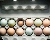 Food photography - Farm Fresh - 5x7 kitchen art print - one dozen organic free-range eggs photo Farmers market shabby chic