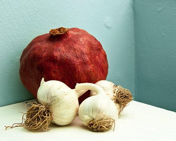 Red aqua food photo - Garlic Love - 8x10 fine art print - kitchen pomegranate food lovers