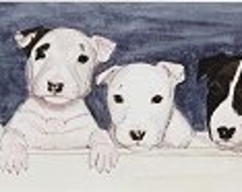 Seven- Bull Terriers