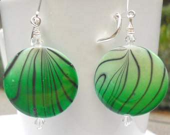 Green Paua shell earrings with stripes in a large size