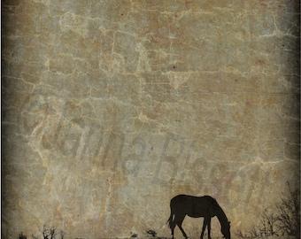 Sepia Horse Fine Art Photographic Print On Metallic Paper