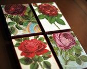 1890 Set of Four Brilliantly Coloured Rose ChromolithoBLOCKs (Trademarked). On wood panel / ready to hang