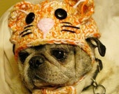 Idenity Crisis Kitty Cat Hat for Dogs Crochet Pattern pdf 103 Instructional Videos included