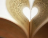 Book Love ACEO Photography Print