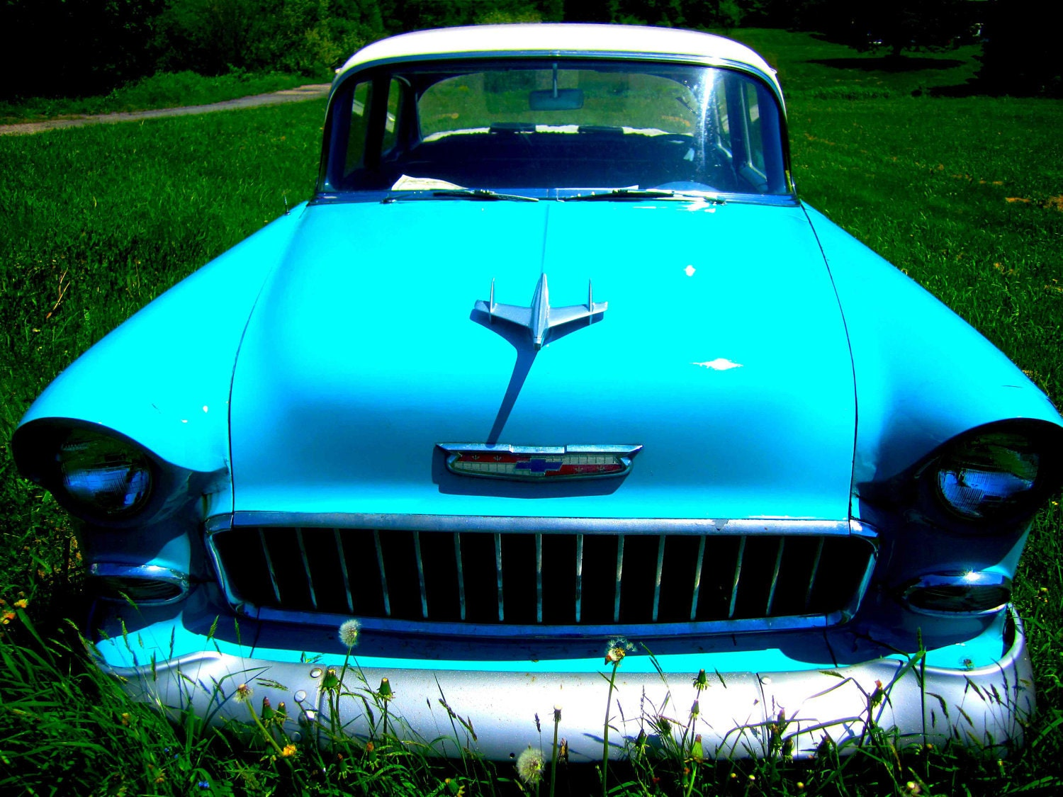 57 Chevy Classic Cars 4 8 X 10 Photo Print/ Home Decor/ Wall