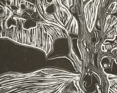 River Tree - Gauley River, WV