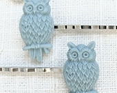 Earthy blue owl hair pin set.  Silver bobby pins by Sweet And Simple Jewelry Design.