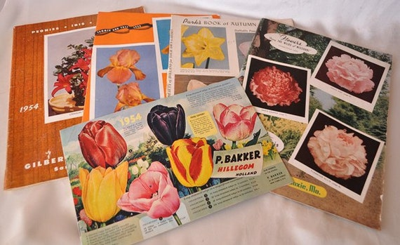 Flower Bulb Seed Catalogs - 5 From the 1950s