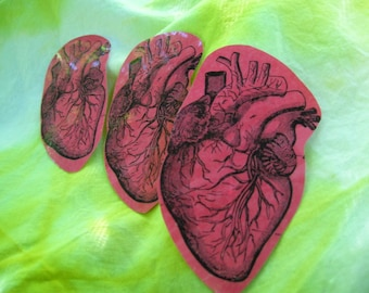 heart stickers realistic anatomical human red