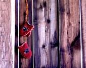 Adirondack Black Bear Mittens