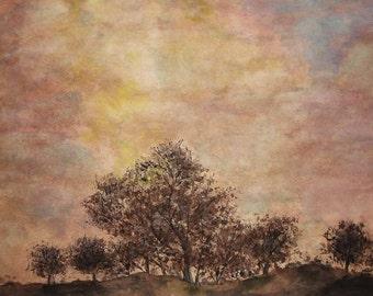 Evening Tree 9x12 original watercolor