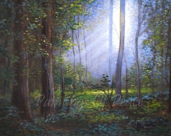 Tree Landscape Painting - Forest Painting -Grove - Acrylic - 11 x 14 Painting  -On Sale Now