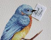 Blue Bird of Happiness Thank You Cards. Set of 50