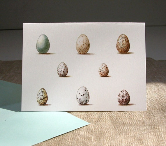 Wild Bird Eggs Cards original art reproduction gardening art set of 6 note cards and envelopes