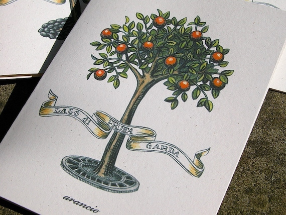 Lago di Garda Frutta original art reproduction botanical fruit tree gift for gardener set of 4 cards