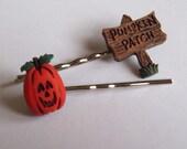 Pumpkin Patch Girls Hair Clip Set