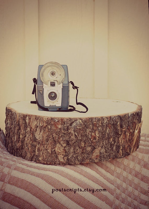 "Custom for Brittany - 14"" STUMP Rustic Wood Tree Trunk Slice Wedding Cake Base or Photography Prop"