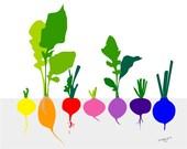 Vegetable Art, Radish Art, Radish Print, Food Art, Food Illustration, Art Print, Kitchen Decor, Kitchen Wall Art, Dining Room Decor