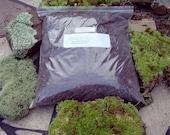 Organic soil for moss-Stuffed Qt Bag full-Terrarium Soil