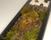 Zen Moss Garden Terrarium-Moss Covered stone-Rake and white sand included